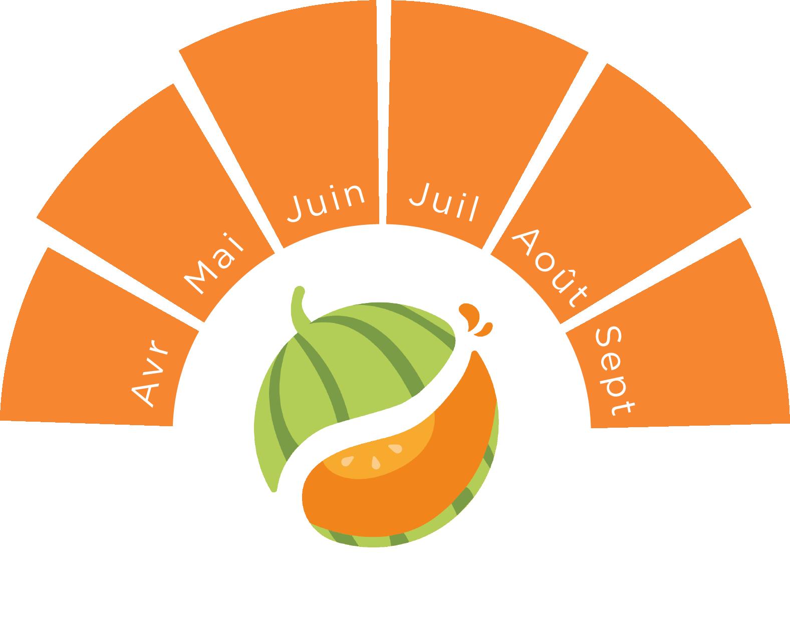 saison du melon