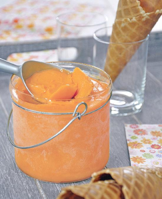 Sorbet maison au melon